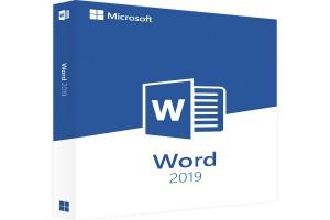 Microsoft Word : Maîtrise du logiciel de traitement de texte